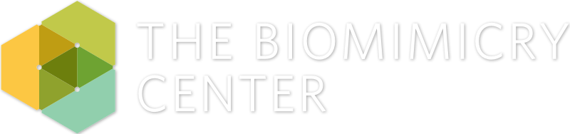 The Biomimicry Center at Arizona State University